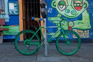 Virginia Bike