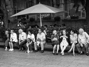 Festival watchers
