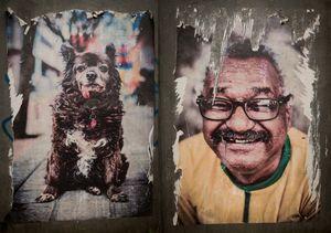 Old Dog / Man smiling