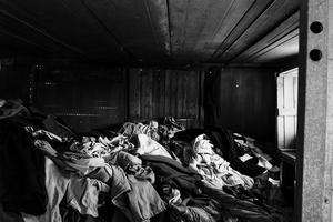 White Shelter #26