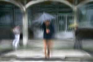 Umbrellas #1268