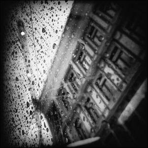 Rain, Oslo #12