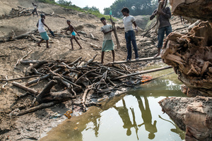 Every single branch and dry stick is collected and delivered to purchases on the river bank and then by boats transported further. In many cases this activity subsist all the families.