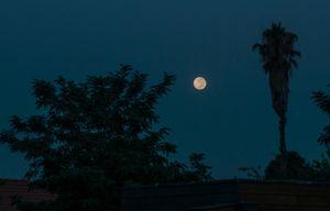 Leaving moon