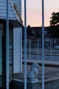 Lion, Northeast View, 7.28.15, 8:07pm, 2015