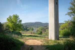 14_JoanSorolla_Catalonia
