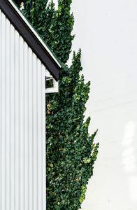 Skólavörðustígur, 101 Reykjavík