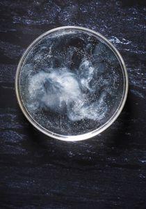 Petri Nebula 495.8