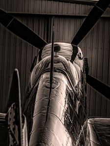 Solitary Spitfire