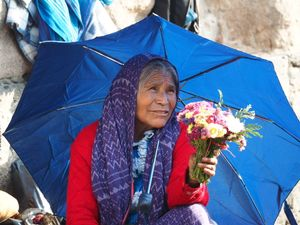 La Vendedora de Flores