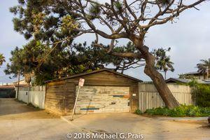 Garage and Tree (Horizontal)