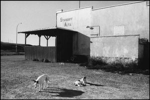 © George Webber - General Store, Stand Off, 1997
