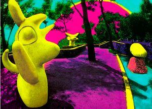 """""""Miro's Playground"""""""