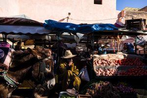 Marrakesh #7