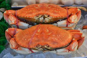 Crabs, Maine Ave. Seafood Market, Washington, D.C.