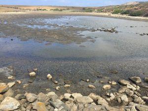 Freshwater  natural reserve