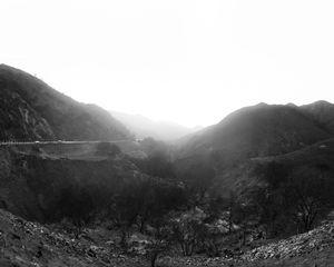 Burnt Landscape #5