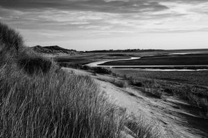 Beadnell coastal dunes and the Long Nanny