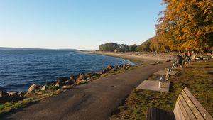 The Beach in Seattle