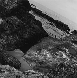 Point Lobos, CA, 2010                                   © Kimberly Schneider