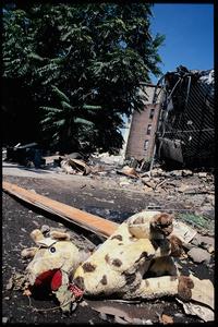 Lewis Avenue, Brooklyn, 2001