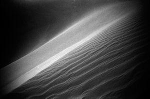 LIWA Desert, border of UAE and Saudi; 2015; LeicaM6, 35mm, Ilford film 400asa:  part of the series INHABITED DESERTS, Analogue, no photoshop. No retouching