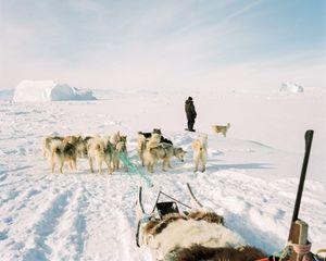 The endless arctic horizons