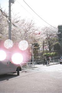 Minato-ku, Tokyo  2011