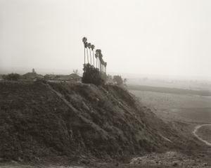 New development on a former citrus-growing estate, Highland, California © Robert Adams, Jeu de Paume