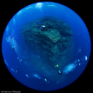 """""""The Boiler"""" a huge lavic formation raises from deeper than 40 meters to just below the surface on the side of Isla San Benedicto, Revillagigedo Archipelago, Mexico, far out in the Pacific Ocean."""