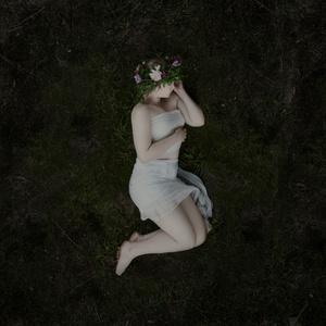 Sleeping Beauty V