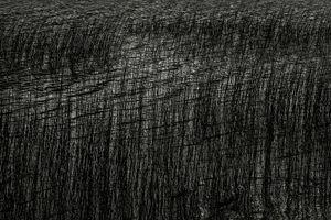 Upper Hadlock Pond 33, © Alan Henriksen