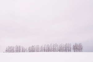 Winter Horizon in the Vicinity -03