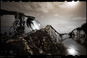 The Lens   © Seán Duggan