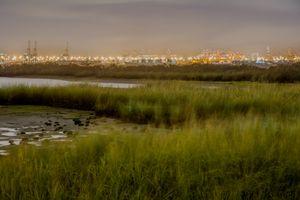 Park Rutkowski with view on Port Elizabeth
