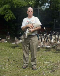 Goose man