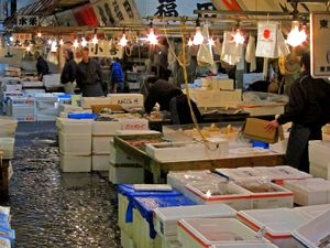 selling fish directly out of the box