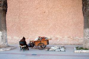 The wool merchant