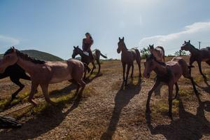 """Malu """"riding"""" a horse at Baconao National Park, which has models of prehistoric animals, near Santiago de Cuba"""