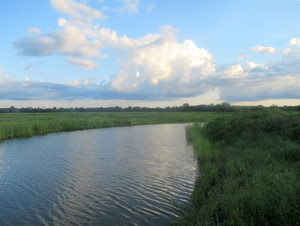 Kansas Wetlands-Daily Journeys-2