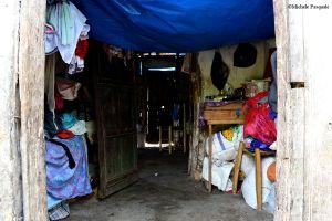 Home's Interior(s).