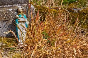 Old Cemetery, Newtownforbes,Co Longford,Ireland.