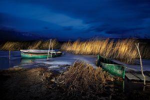 Reeds end Boats, Dojran, Macedonia