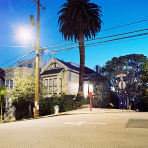 House behind palm tree on Leavenworth Street
