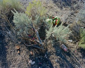 Sagebrush and Watermelon, Jefferson County