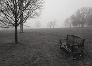 Waveny Park, New Canaan, CT 12 12 20