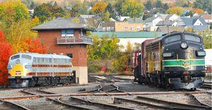 Steamtown Trains