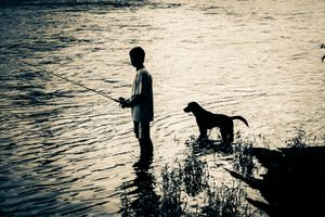 Both seemed to be ready for some nice Bass :)