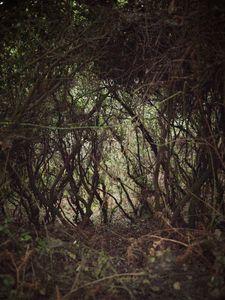 Quiet Isolation | Outland | Salina, Sicily | No. 7
