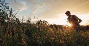 A farmer at sunset